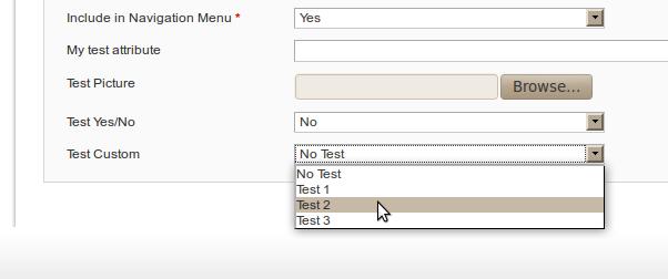 Atributo de tipo dropdown con valores propios para las categorías en Magento