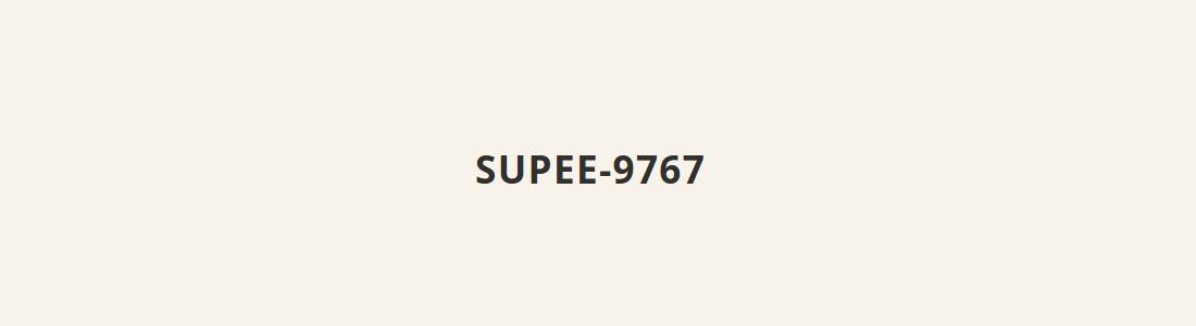 Magento SUPEE-9767